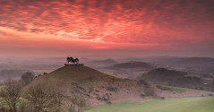 Colmers Hill (Chrissphotos) Tags: colmershill dorset sunrise red green land sky trees landscape canon camera lens 5dsr 1635l