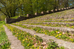 Löwenzahn-Tribüne (JBsLightAndShadow) Tags: nikon nikond750 tamronsp2470mmf28divcusd grün green gelb yellow löwenzahn dandelion stufen stairs steps grandstand tribüne thingstätte heidelberg heiligenberg