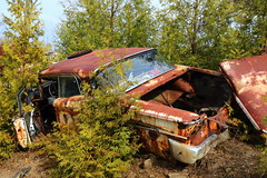 IMG_2623 (Irina Souiki) Tags: rusty crusty cars mcleansautowreckers milton ontario old oldcars