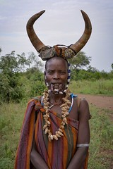 Woman, Mursi Tribe (Rod Waddington) Tags: africa african afrika afrique äthiopien ethiopia ethiopian ethnic etiopia ethnicity ethiopie etiopian omo omovalley outdoor mursi tribe traditional tribal culture cultural woman female cow horns cattle shells beads scarification lip portrait people mago