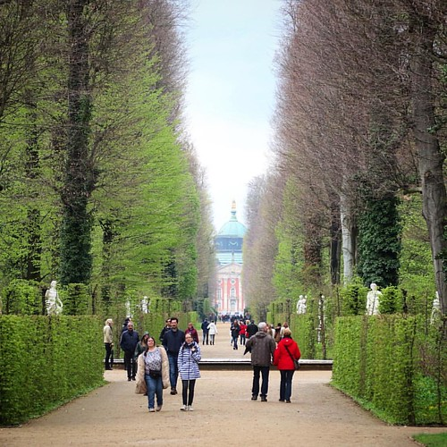 The grand walkway up to the palace #potsdam #schlosssanssouci