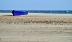 Fuerte viento de levante (ZAP.M) Tags: playa arena viento elpalmar conildelafrontera cádiz andalucía españa flickr mpazdelcerro zapm nikon nikond5300