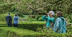 Bird Watching (architekt2) Tags: bird watching cold outside nature viewers elderly stroll trees birds