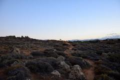 summer moods (JoannaRB2009) Tags: summer evening landscape view path people couple walk plants bythesea nature crete kriti kreta greece greek