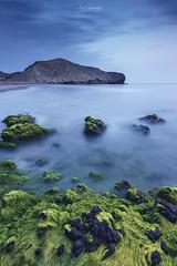 Cubierto de algas (Jose HL) Tags: cabodegata cabo gata playa horaazul algas mar mediterraneo medialuna nijar almeria andalucia rocas landscape largaexposición largaexposicióndiurna josehernandez