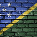 National Flag of Solomon Islands on a Brick Wall