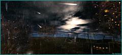 Atmosphère ... (Tim Deschanel) Tags: tim deschanel sl second life green story exploration landscape paysage pluie rain
