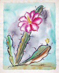 Happy spring to you all! (DeGrazia Gallery in the Sun) Tags: nationalhistoricdistrict teddegrazia degrazia ettore ted artist galleryinthesun artgallery gallery adobe architecture tucson arizona az santacatalinas desert watercolor painting spring flores flowers cactus blooms
