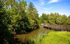 promenade au soleil (.Sophie C.) Tags: ailette chamouille 02 aisne picardie leshautsdefrance lac lacdailette passerelle eau inexplore