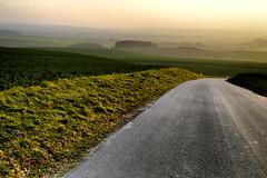 the road to nowhere (Neal J.Wilson) Tags: denmark danishlandscapes danish jylland jutland d3200 nikon road countryside countrylane sunset dusk scandinavia nordic perspective fields empty europe eje