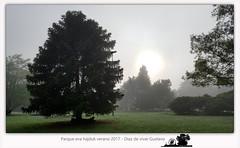 Parque eva hajduk verano 2017 - Diaz De Vivar Gustavo (Diaz De Vivar Gustavo) Tags: naturaleza nature ranelagh parque eva hajduk diaz de vivar gustavo ranelenses