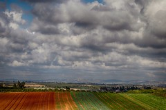The Rainbow of Fields (Ivona & Eli) Tags: sharon middleeast noman landscapes foliage farming israel horizon sky rural clouds fields
