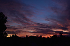 """Before the tropical storm [cyclone Debbie] (Images by Jeff - from the sea) Tags: nikon d7200 storm tamronsp2470mmf28divcusd tamron2470mm clouds bluesky palmtrees sunset pinksunset redsunset cyclonedebbie cyclone march 2017 topf25 1000v40f dusk sky 1500v60f """"nikonflickraward"""" 7dwf"""
