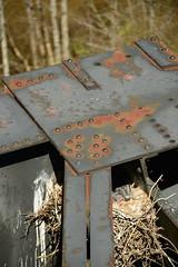 DSC_9693 (Gary Streiffer) Tags: ghsinstagram vastatepark vastateparks virginiastatepark highbridgestatepark