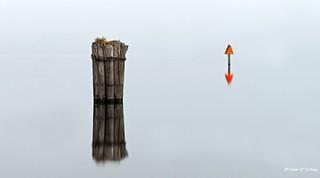 Blurred Reflections ( 扭曲倒影 )