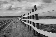 Farm Warp (KClarkPhotography) Tags: blackandwhite texas backroads fenceline warped leading lines dramatic