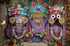 Gaura Arati - ISKCON-London Radha Krishna Temple Soho Street - 15/04/2017 - IMG_0713 (DavidC Photography 2) Tags: 10 soho street london w1d 3dl iskconlondon radhakrishna radha krishna temple hare harekrishna krsna mandir england uk iskcon internationalsocietyforkrishnaconsciousness international society for consciousness saturday gaura arati darshan jagannath baladeva subhadra