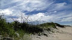 Ausência (Mazé Parchen) Tags: céu céuazul céucomnuvens nuvens nuvensbrancas praia restinga vegetaçãonatural mazé mazéparchen matinhos paraná brasil