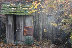 Weathered (Images by Walter Lesus) Tags: shed shack weathered junk moss sign color bush leaves trash