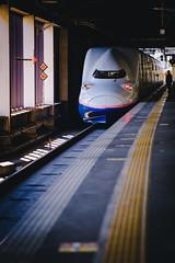 JRE | Max Toki | Shikansen E4 Series | Omiya (Pumpkin Kuma) Tags: jr shinkansen rail omiya e4 上越新幹線 maxとき