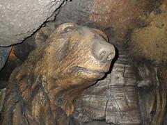 2016-12-28 Animal Kingdom - 141 (s.kosoris) Tags: skosoris pentaxoptiowg1 wg1 pentax florida disney animalkingdom disneysanimalkingdom treeoflife
