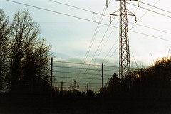 Ferrania 20170422 - #17 (Mytacism) Tags: sunset silhouettes power lines trees forest landscape film ferrania solaris 200 olympus om10 sweden expired pakon f135