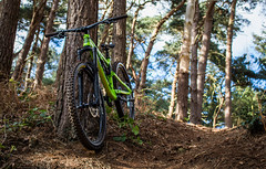 looking up on a One45 (SLR Hardy Photography) Tags: hope shimano sram trees loam peat woodland aerisone45 cycling mountainbike bike bird