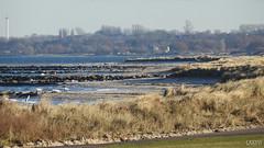 Schoenberger Strand (LXXXVI) Tags: schönberg probstei strand küste ufer deich meer