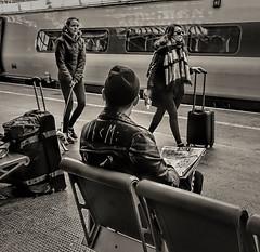 5 Down, 7 Letters Beginning G (whosoever2) Tags: pendolino virgin train railway passenger traveller leather jacket newspaper crossword girl crewe cheshire england uk gb sony dsc rx100m3