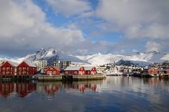 Der Ausblick von unserem Wohnzimmerfenster (Globo Alpin) Tags: lofoten norwegen skitouren winter 2017 skiflugreisen ausland wsf0019