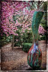GFS 30 (m.kijek) Tags: groundsforsculpture bronze hamiltontownship newjersey sculpture mercercounty art