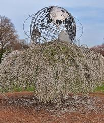 Willow Globe (Tim Schreier) Tags: nyc newyorkcity flushingmeadows queens 50thanniversary worldsfair newyorkny 1964worldsfair robertmoses coronapark worldsfairpavilion 4222014