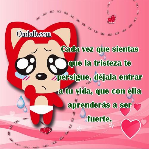 Frases De Tristeza De Amor Con Un Gatito Triste Para Facebook A