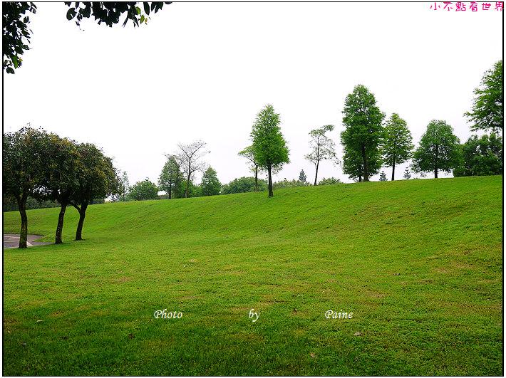 大溪埔頂公園 (25).JPG