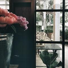 Sunday-workaholic-season งานก็ยังต้องผลิตในวันอาทิตย์และหัวเรื่องร้านดอกไม้ที่คาซ่าลาแปงก็ยังไม่จบฮะ
