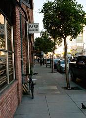Park Parallel. Bonus pigeon. San Francisco (chloe & ivan) Tags: sanfrancisco ca dayofthedonut