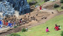 Even children know and understand what a sky burial is, Tibet 2013 (reurinkjan) Tags: vulture 2013 gypshimalayensis himalayangriffon  janreurink  tibetanplateaubtogang tibet birdbya birdflyingjechurtsl childspugu skyburialrockburialgrounddurkhroddurtr charnelgroundzhibaignas skyburialbyagtorjhator khameasterntibet birdskhadr birdlmgyok  kham khamsbodkhamw sertalcountyserthar jagpomkhalakhor lungch khalankhor nampang  jadrangsong nampangchj nampangch birdofpreyvulturejag fly
