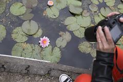 Workshop fotografie Hoofddorp (Workshops fotografie: www.fotocursushoofddorp.nl) Tags: camera holland dutch fotografie photographer nederland thenetherlands workshop hoofddorp 2014 fotograaf haarlemmermeer fotocursus haarlemmermeersebos workshopfotografie siebebaardafotografie wwwfotocursushoofddorpnl