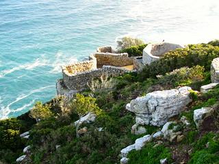 Cape Town Luxury Safari 9