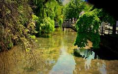 Blaubeuren, Am Blautopf, romantic , 74029/3517 (roba66) Tags: travel river reisen urlaub explore bach romantic fluss voyages ilu badenwrttemberg blautopf blaubeuren roba66