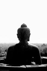 buddha view