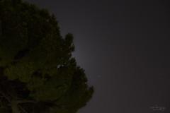 natura come sipario di stelle e luna 02 (ap.design) Tags: longexposure nature pine night stars universe pino tamron1750 canoneos60d