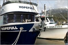 hopefull (tesseract33) Tags: world travel light colour art boats outside outdoors nikon nikondigital rupert princerupert fishboats nikond300 tesseract33 peterlangphotography
