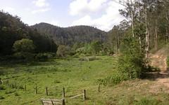 350 Bunning Creek Road, Yarramalong NSW