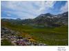 Llagu Cerveriz (Argayu) Tags: verde nikon asturias nubes montaña nuages somiedo asturies nubols reservadelabiosfera saliencia parquenaturaldesomiedo platinumphoto vosplusbellesphotos nikond5000 ñubes
