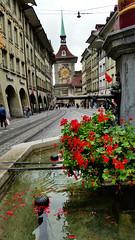 Marktgasse, Berne (Mynh) Tags: street switzerland clocktower berne marktgasse