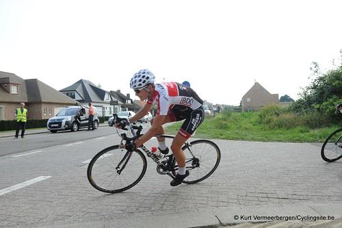 Geel Oosterlo  (240)