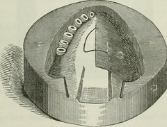 Anglų lietuvių žodynas. Žodis cheoplastic metal reiškia cheoplastic metalo lietuviškai.
