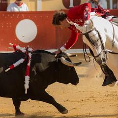 Pablo HERMOZO DE MENDOZA (Franz EDEN) Tags: cheval bull toro ftesdebayonne fiestabrava rejon tauromachie pablohermosodemendoza