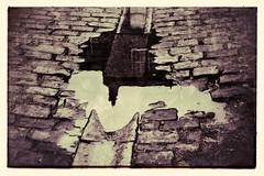 pavement reflection